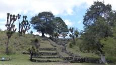 Dès l'entrée, les ruines se mêlent harmonieusement à la végétation