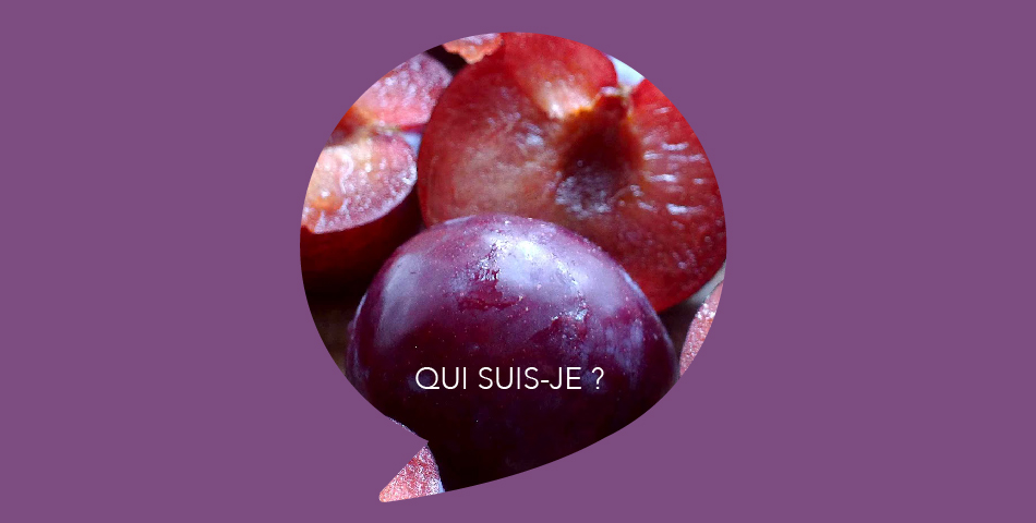 Huile de prune, ingredient de L'Optimiste, soin slow cosmetique bio et vegan - Les Happycuriennes