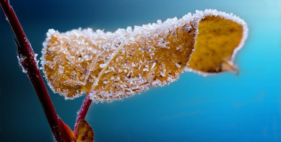 Conseils et astuces pour une belle peau en hiver