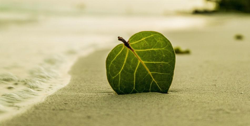 5 appli anti-stress pour une peau et vie heureuses