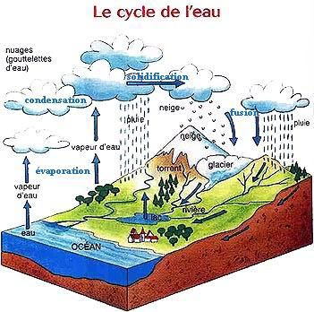 pollution de l eau cycle 3