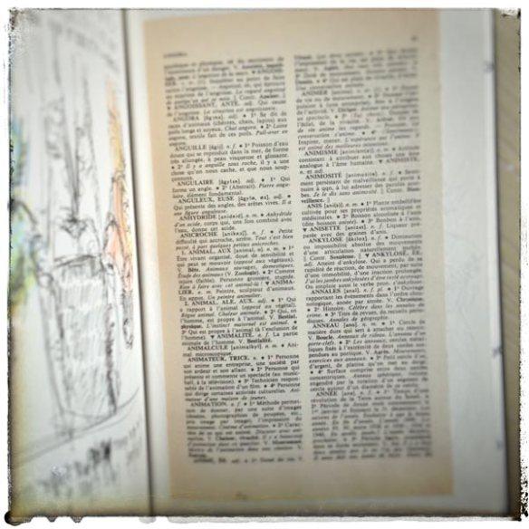 Dictionnaire-Dessin-renata-chien-4ll