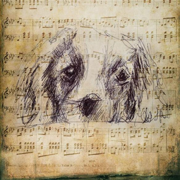 musique-partition-Dessin-renata-chien-A