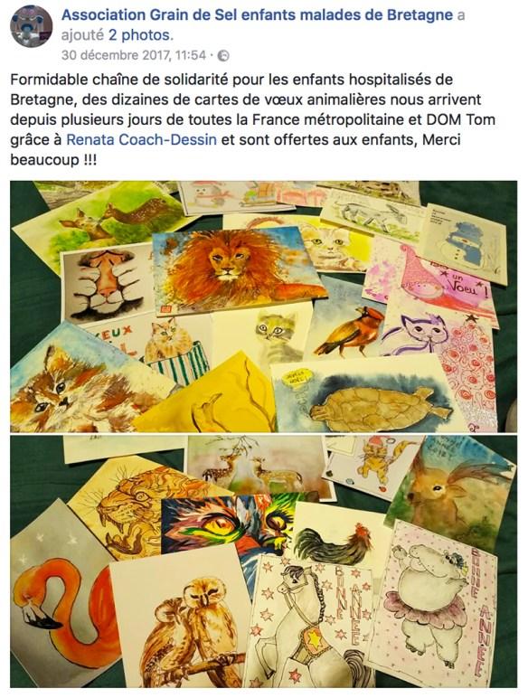 fb-cartes-voeux-enfants-hospitalises
