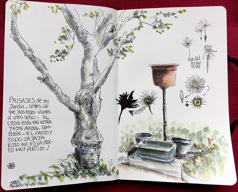 dessiner-arbre-renata-aquarelle-D-5
