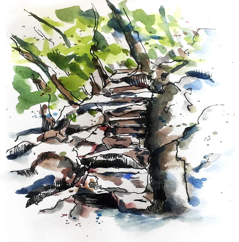 pierres-arbres-nature-dessin-renata