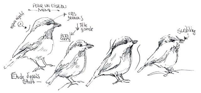 Apprendre A Dessiner Un Oiseau Cours De Dessin
