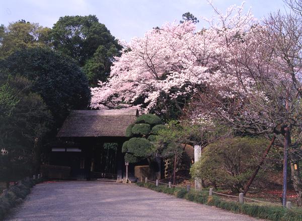 Kairakuen par CCI