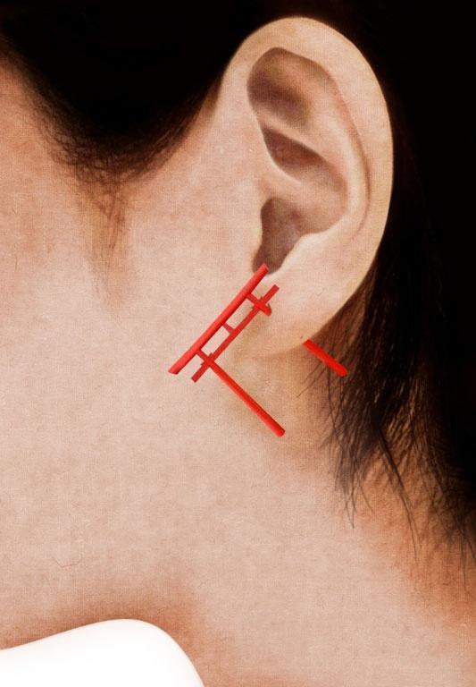 Torigate boucle d'oreille