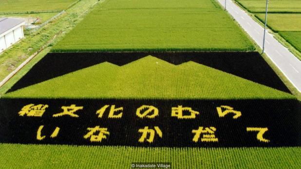 Peinture sur champs à Inakadate 1993