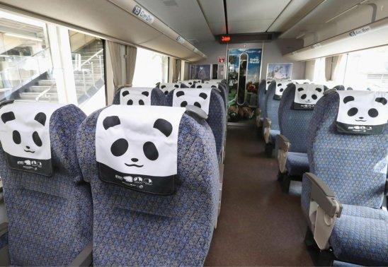 Train Panda Kyoto intérieur