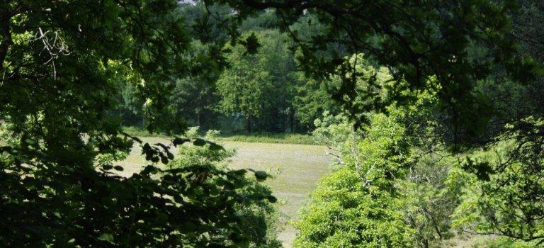 Fête de la nature ! # 24-25 mai 2014