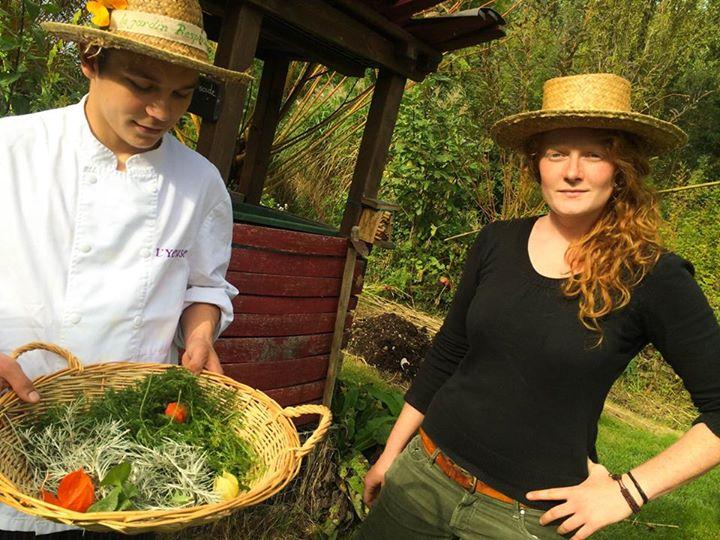 Ramassage des légumes du potager avant les premières gelées