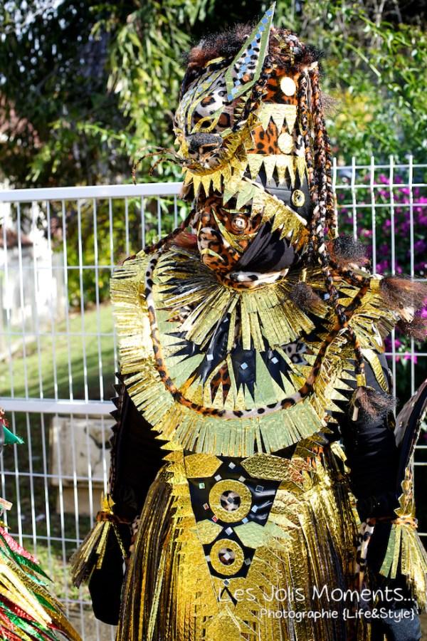 Carnaval des Trois Ilets 2013 WEB 2