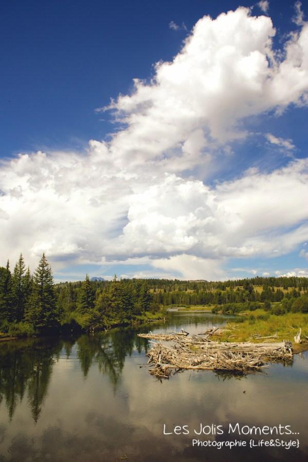 Grand Teton National Park 3 (1)