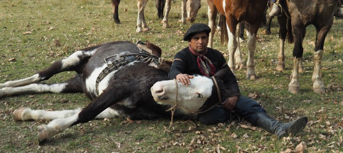 In Photos: A Day at the El Ombu Ranch in Argentina