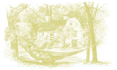 hammockgreen.0.jpg