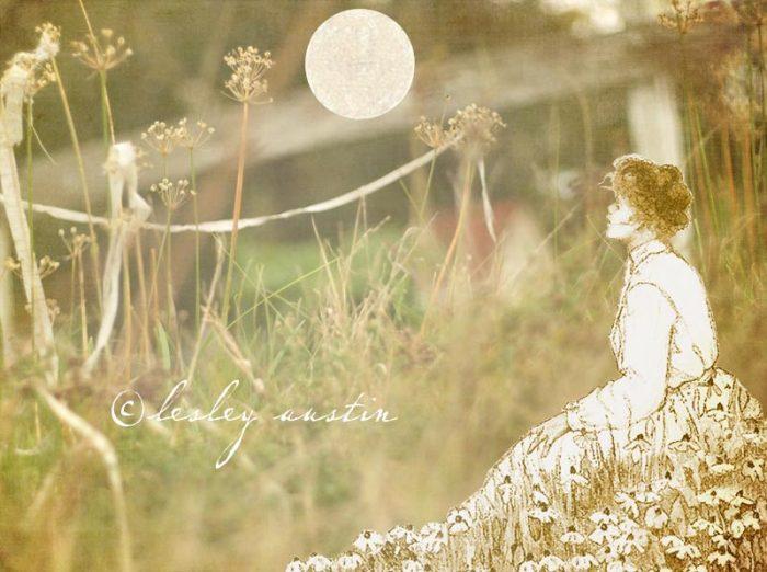 rosehipnovember-full-moon-c
