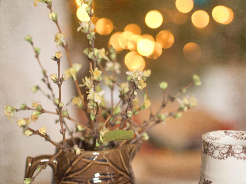 springblossomchristmastree