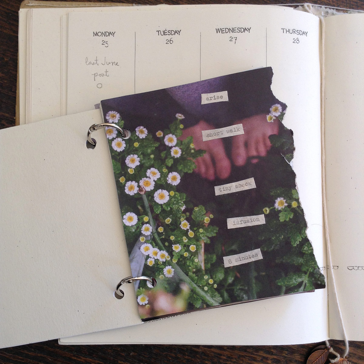 The Book of Hours...pebbles to place and follow through your day. A homemade, papery system by Lesley Austin of Small Meadow-Wild Simplicity.