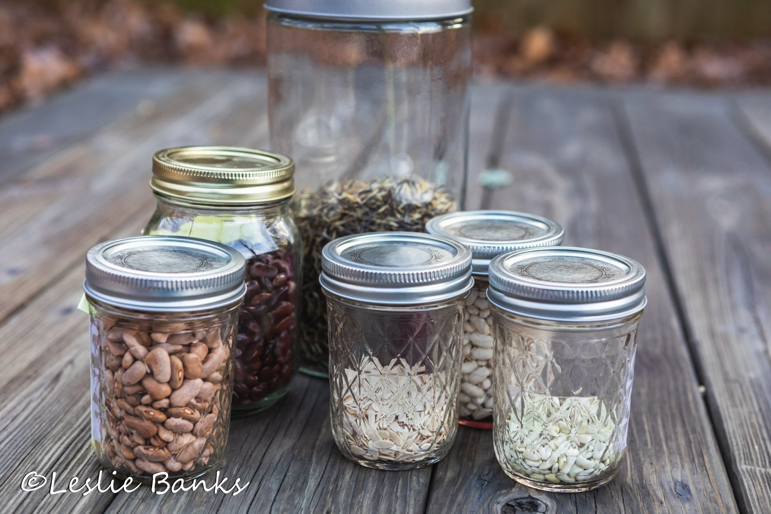 Seed Saving in Jars