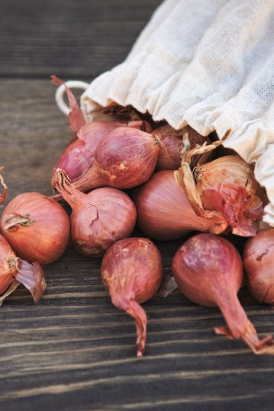 Bag of Shallot Sets