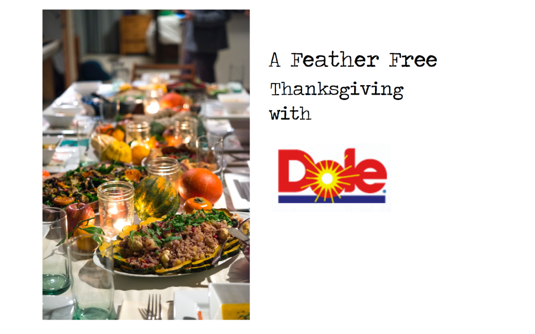 Feather Free Thanksgiving