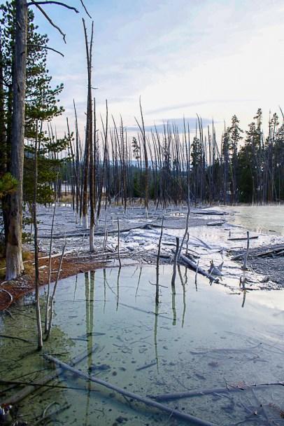 Yellowstone-2327
