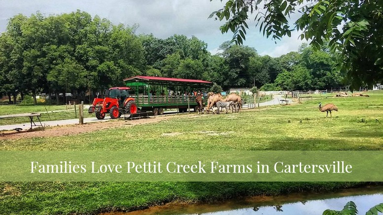 pettit-creek-farms