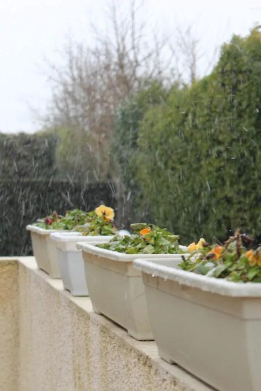 il a neigé sur Bordeaux - les lubies de louise (4 sur 4)