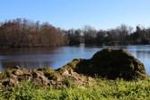 Parc Majolan - louise (40 sur 49)
