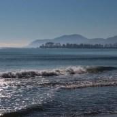 Nouvelle Zélande - Nelson & buller gorge swingbridge - les lubies de Louise (6 sur 42)