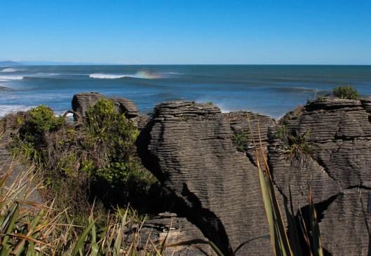 Nouvelle Zélande - Punakaiki - les lubies de louise (7 sur 25)