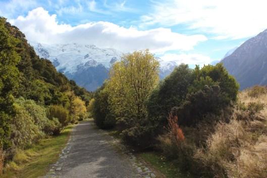Mont cook nouvelle Zélande - les lubies de Louise (13 sur 57)