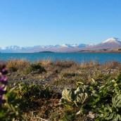 Nouvelle Zélande - Christchurch & twizel - les lubies de louise (28 sur 49)