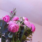 Mes jolies fleurs roses