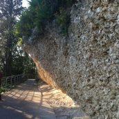 Impressionnant ce mur d'huites