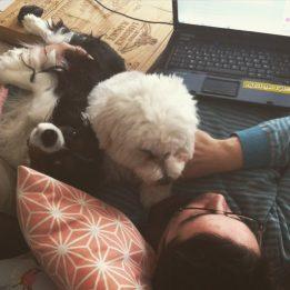 Les chiens trouvent certains avantages à la convalescence de mon homme