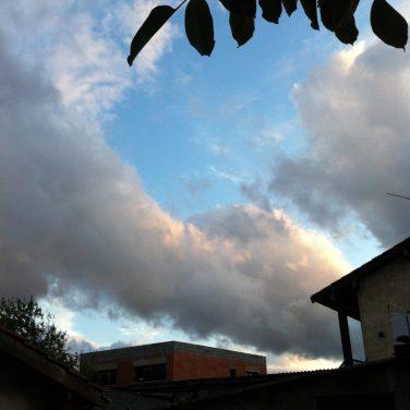 Il y a eu un terrible feu de forêt à côté de chez moi... :(