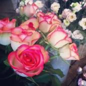 Les jolies fleurs d'Aimée