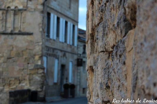 Saint émilion- les lubies de louise-8
