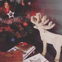 décembre 2016 en images- les lubies de louise-44