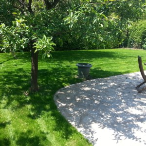 jardinier paysagiste rouen engazonnement