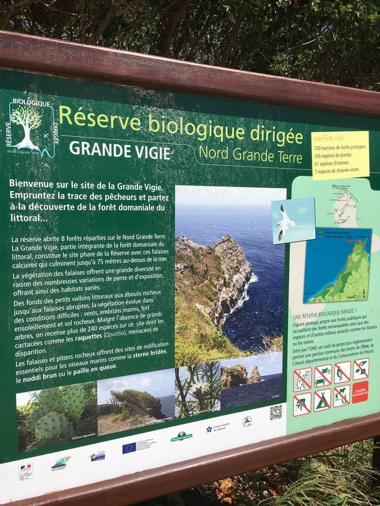 grande vigie-pointe-falaises-guadeloupe-caraibes