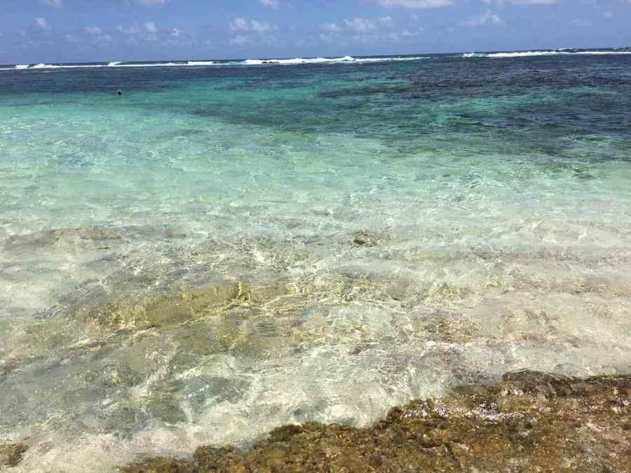 plage-salines-guadeloupe-caraibes-eaux-bleues-turquoises