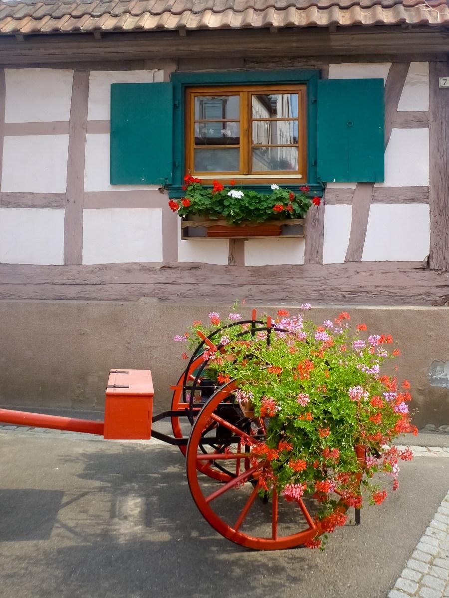 route des vins-alsace-france-maison-fleurs