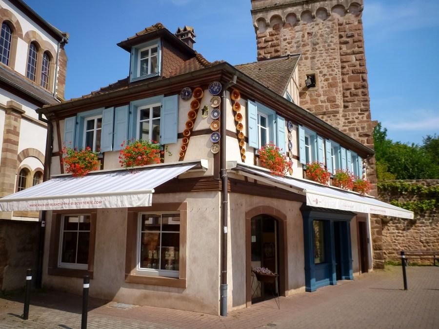route des vins-alsace-obernai-ville-fleurs-maisons-colombages