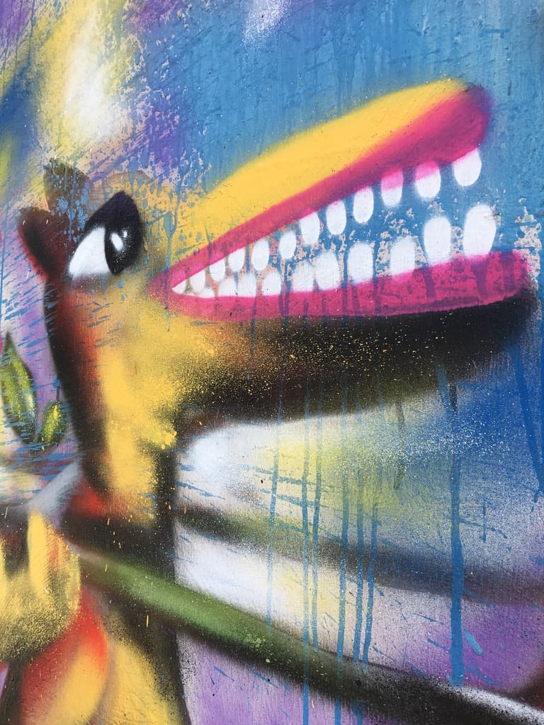 street art-pointe pitre-oeuvres-graf-tag-mural-renard-couleurs