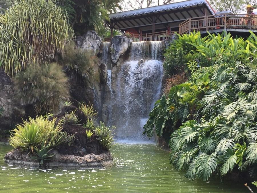 jardin-botanique-nature-fleur-caraibes-guadeloupe-basse terre-vegetation-plan d'eau-restaurant-cascade