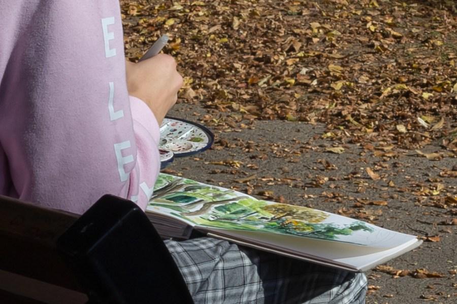 valenciennes-hainaut-visites mystères-autour du louvre lens-musee-beaux arts-jardin-fleur-automne-rhonelle-artiste-peintre